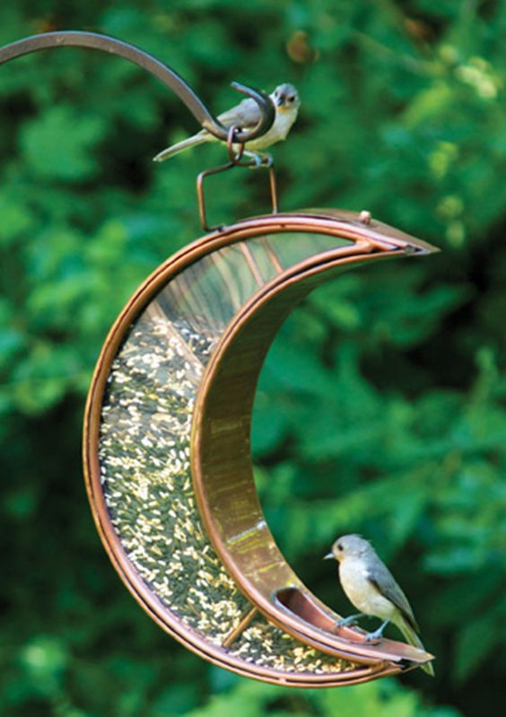 25 Best Bird Feeders To Attract Birds To Your Garden