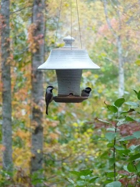 ceramic feeder 25 Best Bird Feeders To Attract Birds To Your Garden