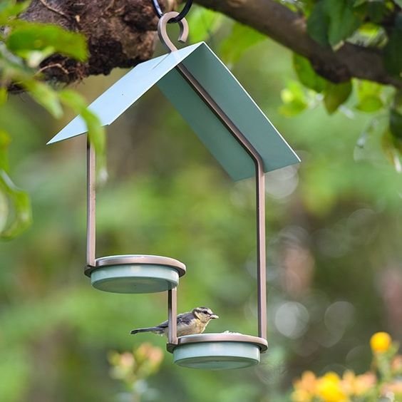one up one down 25 Best Bird Feeders To Attract Birds To Your Garden