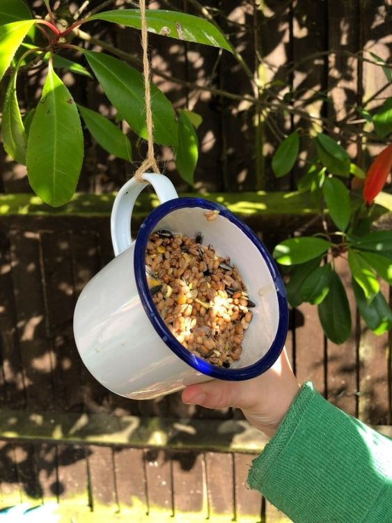 simple diy 25 Best Bird Feeders To Attract Birds To Your Garden