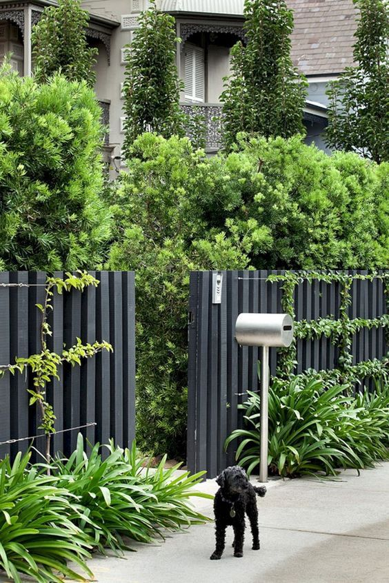 grey fence for privacy How to Choose a Style for Your Garden Fence