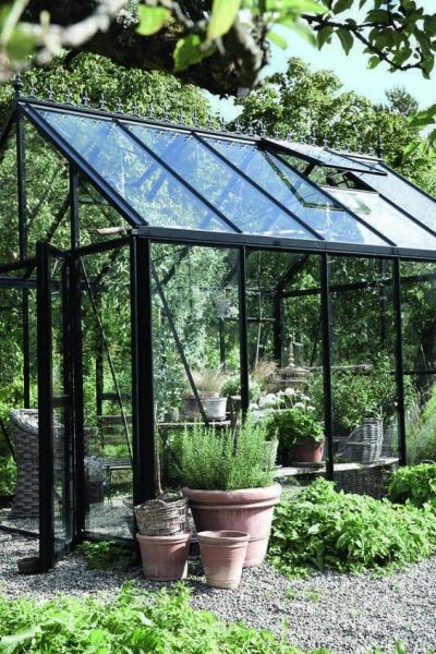 6 Ways You Can Use A Greenhouse