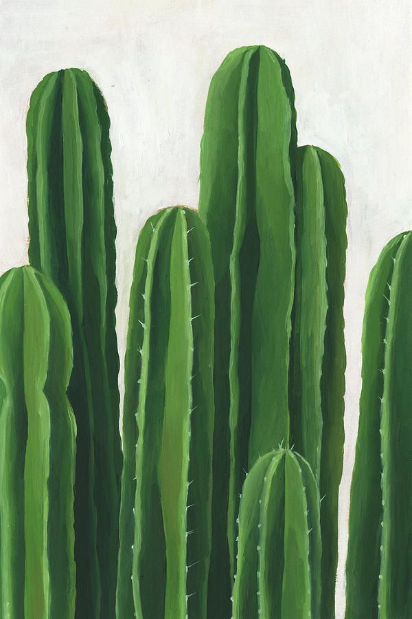 cacti 10 Bedroom Wall Art Pieces That Will Brighten Your Mornings