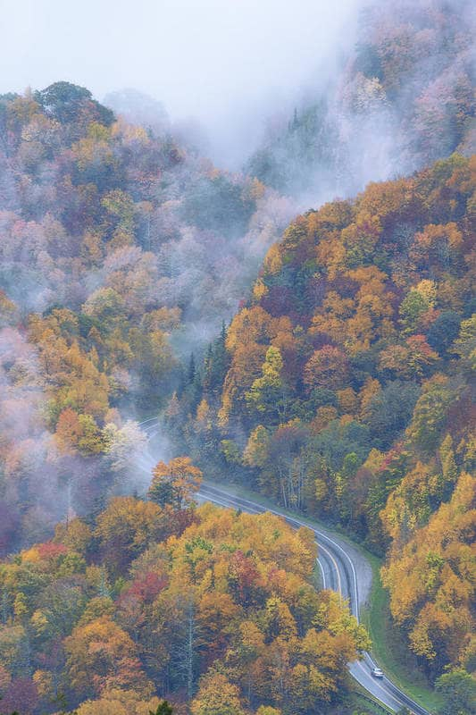 great smoky mountains national park north carolina usa 10 Bedroom Wall Art Pieces That Will Brighten Your Mornings