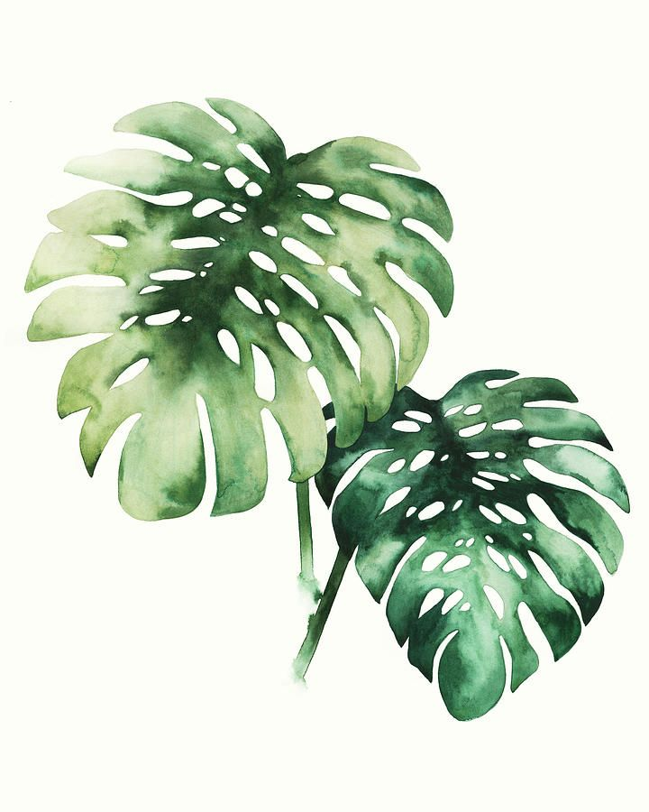 tropical plant bedroom wall art idea 10 Bedroom Wall Art Pieces That Will Brighten Your Mornings