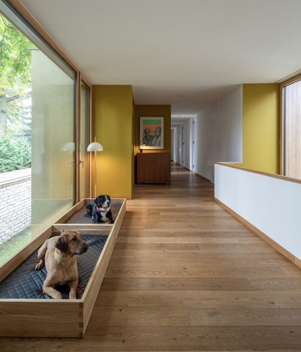 dog beds Haus am See by Carlos Zwick