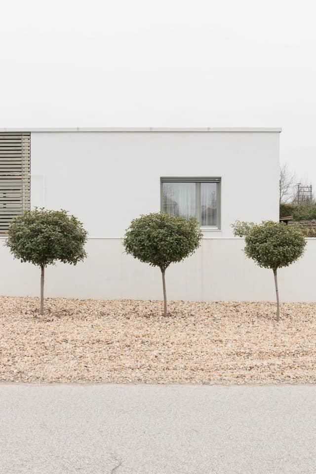 Semi-Detached House by Adam Balog